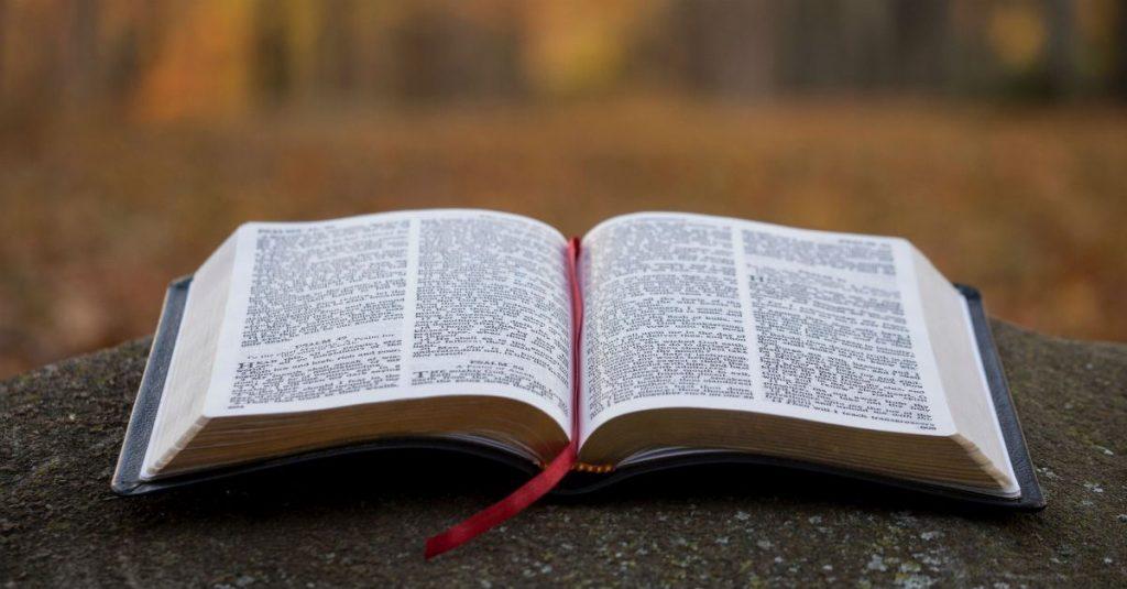 CHƯƠNG TRÌNH THỜ PHƯỢNG DÀNH CHO BAN THANH NIÊN. 12.07.2020